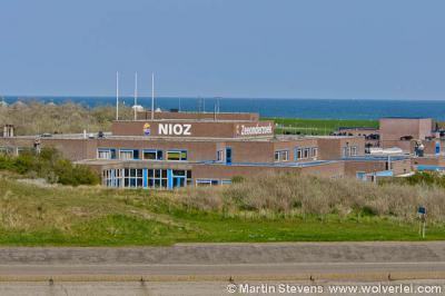 't Horntje, het NIOZ naast de veerhaven