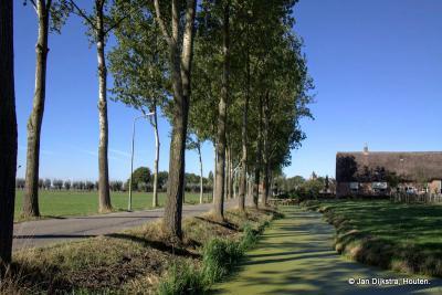 In de verte zien we de toren van de kerk van Leerbroek. De straat Recht van ter Leede loopt door tot aan de kerk van dat dorp.