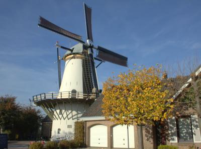 Benthuizen, Molen De Haas in de Dorpsstraat. De molenaar is bezig de molen onder zeil te brengen.