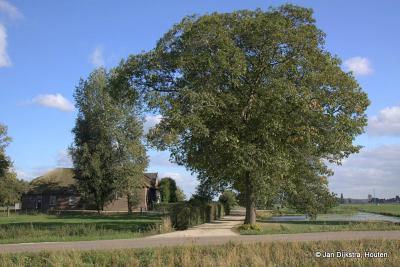 Nieuwland, aan de Smalzijde zien we boerderij Grootbos uit begin 18e eeuw. De boerderij is een rijksmonument.