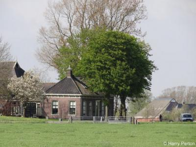 Barnwerd, buurtschapsgezicht (© Harry Perton/https://groninganus.wordpress.com)