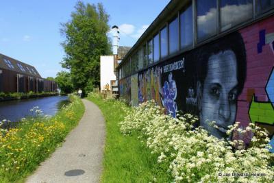 Barwoutswaarder, aan de Oude Rijn, in het voorjaar