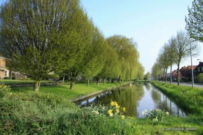 De bloembollen schieten in het voorjaar 'als paddenstoelen uit de grond' in Berkhout, een groen paradijsje op steenworp afstand van de stad Hoorn.