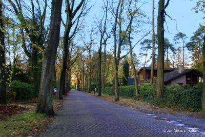 Duinweg in Bosch en Duin