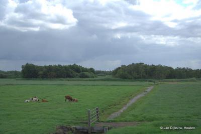 Natuurgebied Botshol, gezien vanuit Waver
