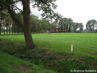 Breklenkamp (buurtschap van Lattrop), blik vanaf de Brekkelerveldweg op de buurtschap.