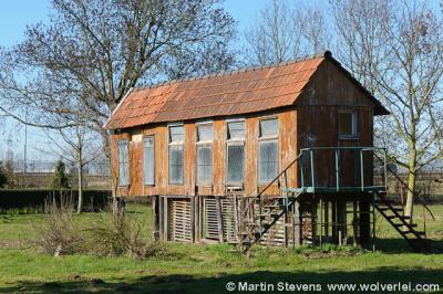 Buchten, gemeente Sittard-Geleen, Zuid Limburg, Duiventil
