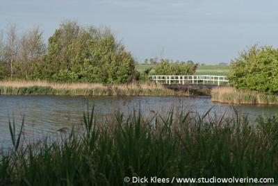 Natuurreservaat bij Ouwerkerk