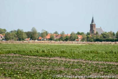 Noordwelle, gezicht op het dorp
