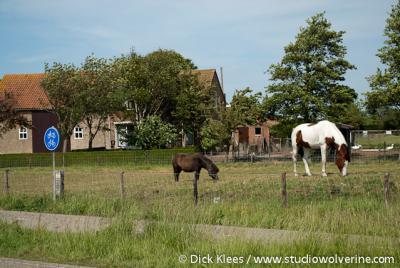 Nieuwerkerke Schutje, boerderij