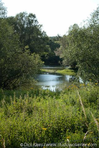 Oude rivierarm langs de Grensmaas