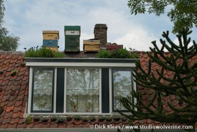 Hoedekenskerke, imkerij op dakkapel