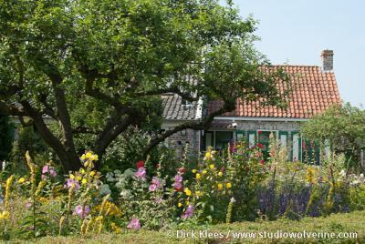 Klein-Valkenisse, boerderijtje verstopt achter bloemenpracht