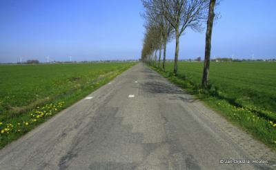 Weidse uitzichten onderweg naar De Weere
