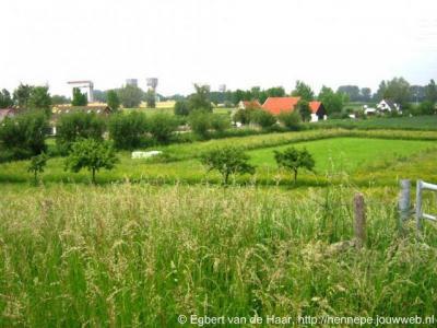 Den Akker (buurtschap van Echteld), hetzelfde buurtschapsgezicht maar nu in groenere omstandigheden.