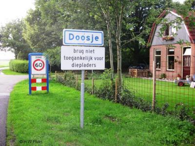 Doosje komt met die naam pas in 1867 voor het eerst in documenten voor. Voorheen heette deze buurtschap Zomerdijk, naar de ligging aan de gelijknamige dijk.