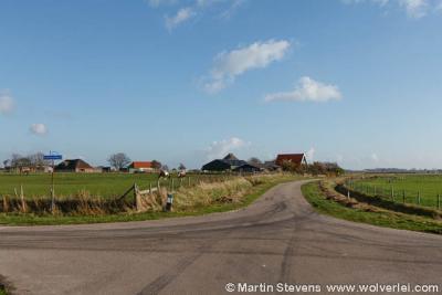 Driehuizen, Den Burg, Texel, Noord Holland