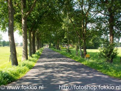 Foxwolde, Haarveen.