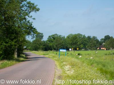 Foxwolde, Moleneind.