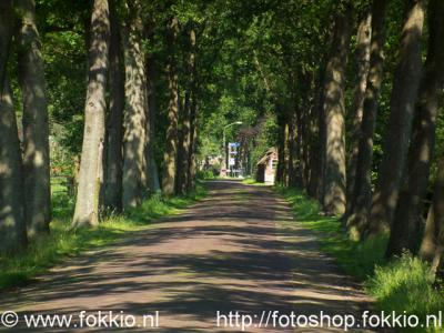 Foxwolde, Roderwolderweg.