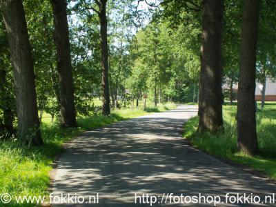 Foxwolde, de Roderwolderweg 'meandert' door het landschap.