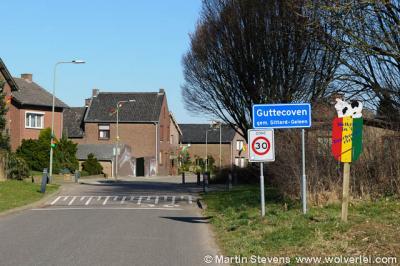 Guttecoven is een dorp in de provincie Limburg, in de regio Westelijke Mijnstreek, gemeente Sittard-Geleen. T/m 1981 gemeente Limbricht. In 1982 over naar gemeente Sittard, in 2001 over naar gemeente Sittard-Geleen.