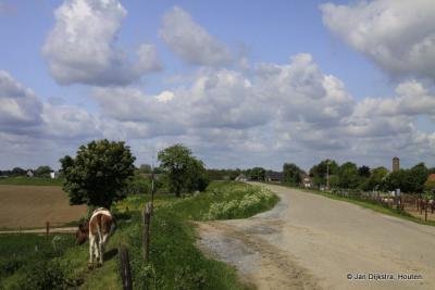 Op de dijk tussen Hedel en Ammerzoden, in de verte zien we de toren van die laatste plaats