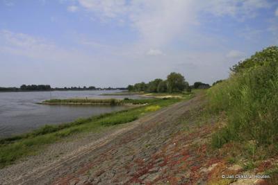 Prachtig begroeide dijk met sedum en euphorbia bij buurtschap Boveneind in het dorpsgebied van Herwijnen