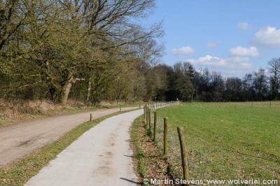 Houtdorp, gemeente Ermelo, Veluwe, Gelderland
