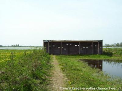 Houtgoor, natuurgebied Bleeke Heide, vogelkijkhut