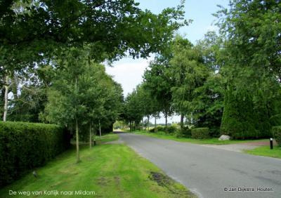 De lommerrijke weg van Katlijk naar Mildam.