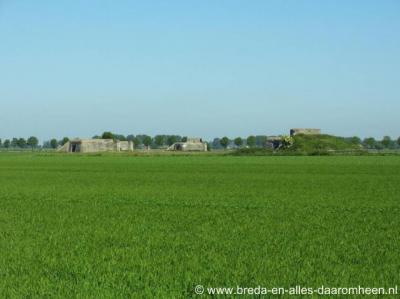 Kladde, de vier Duitse bunkers N van de weg Kladwijck (voorheen Stierenweg) zijn bij de aanleg van de A4 gelukkig gespaard. Rijkswaterstaat heeft ook die grond aangekocht, speciaal met het oogmerk om de bunkers te behouden.