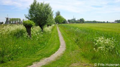 Zicht op Klein Wetsinge met kerk en molen vanaf het Kerkepad aan de kant van Groot Wetsinge.