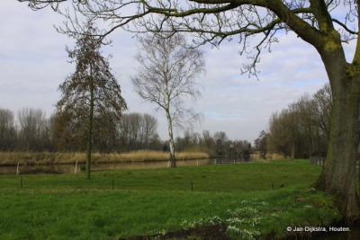 Natuurschoon bij Kooiwijk.