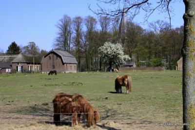 Het mooi gelegen dorp Leur