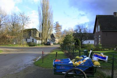 Kalebassentijd in Lutterveld