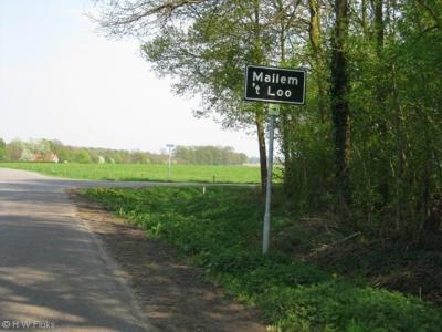 Mallem en 't Loo zijn buurtschappen van Eibergen en staan (omdat 't Loo onder Mallem valt) gezamenlijk op één plaatsnaambordje