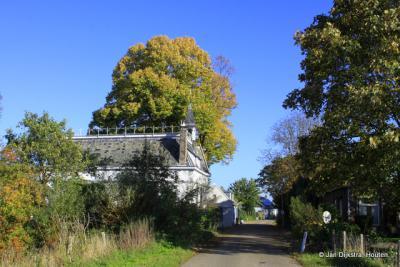 Bij Maren-Kessel op de dijk