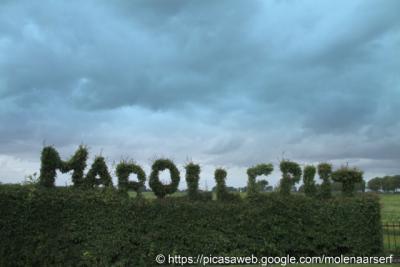 Marolleput, sommige buurtschappen krijgen van hun gemeente geen plaatsnaambordje en maken die dan gewoon zelf. Een Marolleputter heeft dat creatief opgelost door de buurtschapsnaam in zijn heg te 'figuurzagen'.