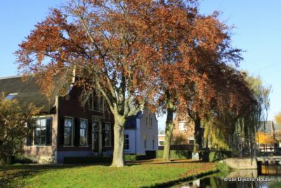 Twee oudjes onder de beukenbomen in Middelburg ZH.