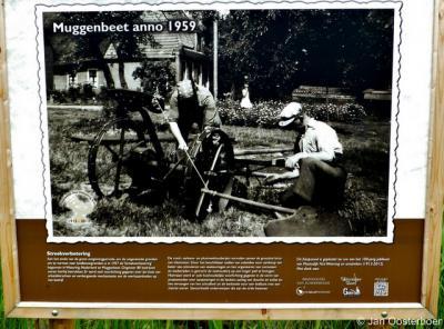 Muggenbeet, op een informatiepaneel ter plekke kun je het een en ander opsteken over de geschiedenis van deze buurtschap