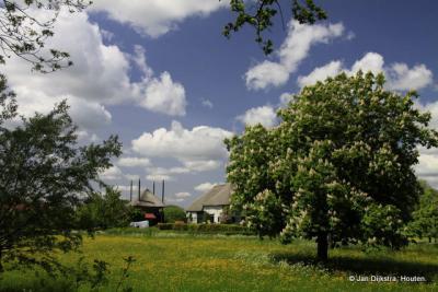 Het beschermde dorpsgezicht van Nederhemert-Zuid in het voorjaar.