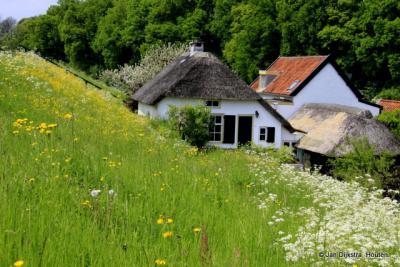 Dijkhuisjes aan de Waalbandijk in Neerijnen