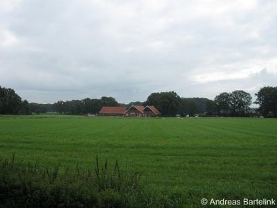 Nutter Wittebergweg