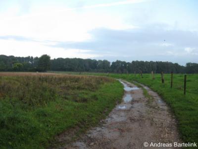Oldenzaal, Overesweg