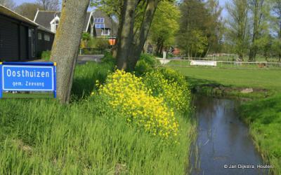 Op een mooie voorjaarsdag in Oosthuizen.
