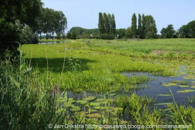 Ook het landschap langs de Oude Meije is een plaatje