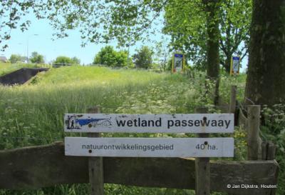 Niet ver van Tiel ligt in de uiterwaarden het mooie 'natuurontwikkelingsgebied' Wetland Passewaay