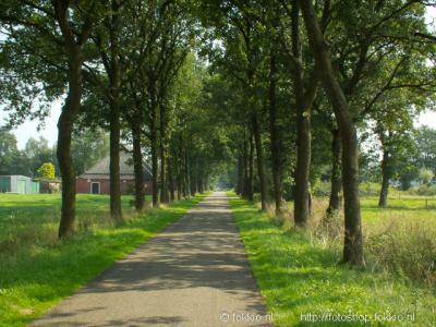 Klunderveen (buurtschap van Peize), buurtschapsgezicht.