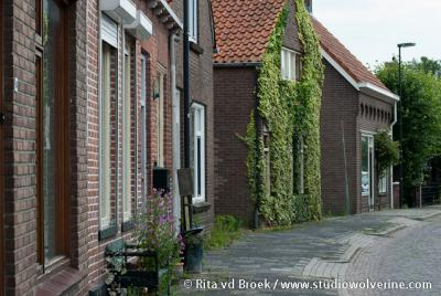 Ellewoutsdijk, dorpsgezicht